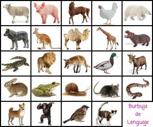 Lotopuzle animales