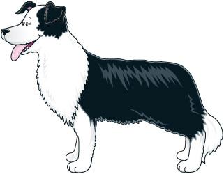 FARM_DOG1