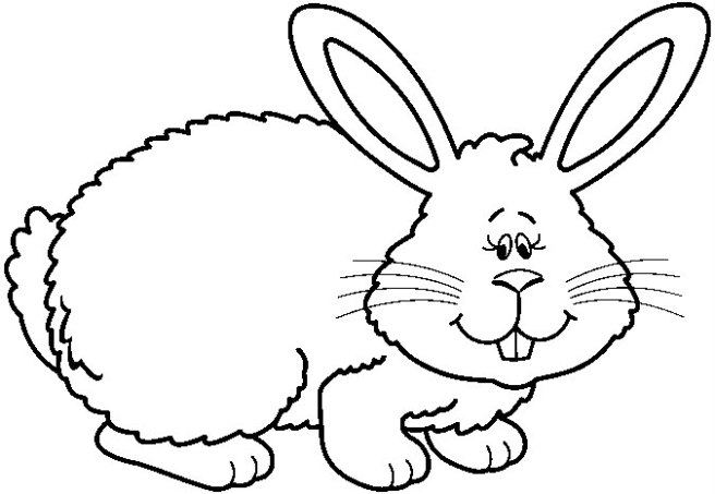 RABBIT1_BW%255B1%255D