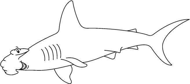 SHARK4_BW