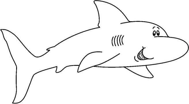 SHARK5_BW