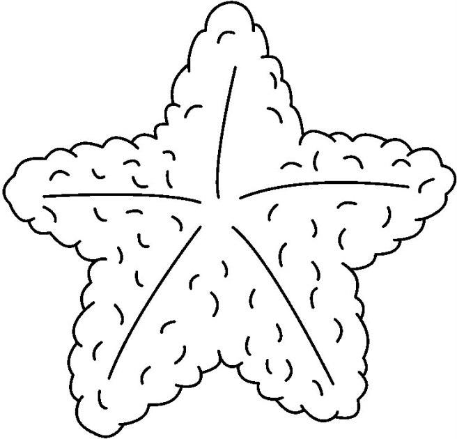 STARFISH1_BW