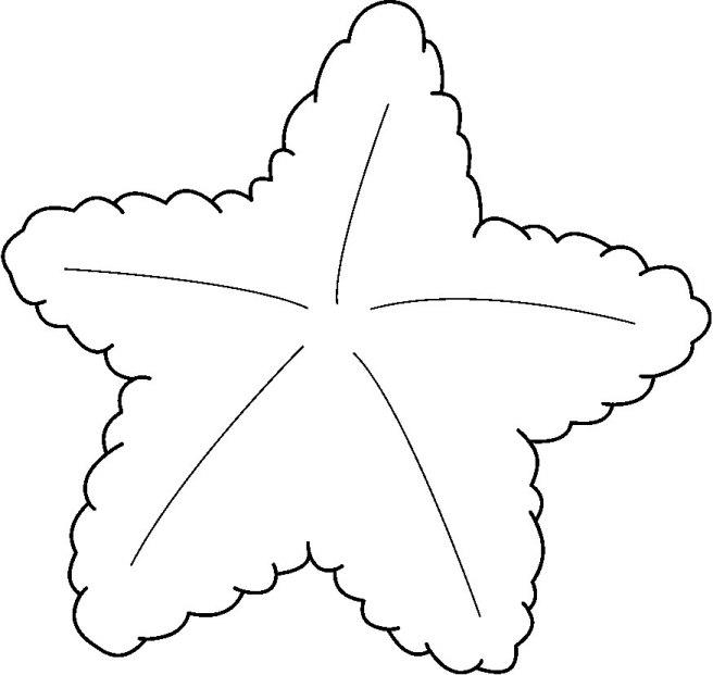 STARFISH3_BW