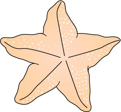 STARFISH4