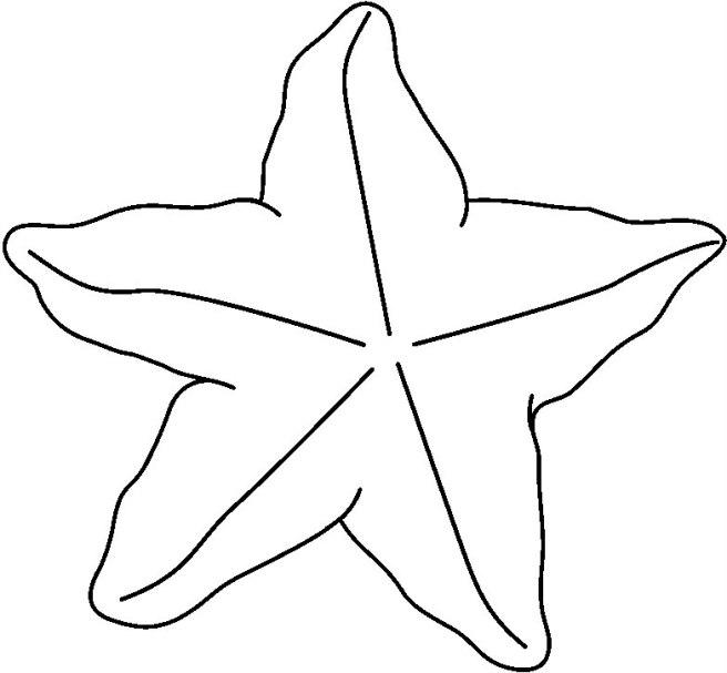 STARFISH4_BW